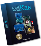 The Diving Guide Kaş