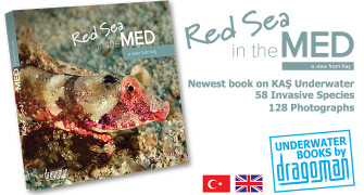 Red Sea in the Med