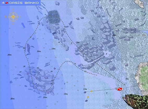Kai Oasis Reef Diving Point